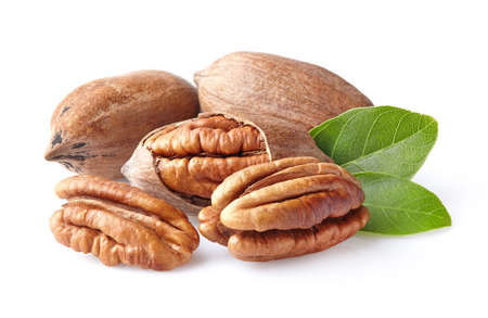 hickory nuts: Pecans with leaves
