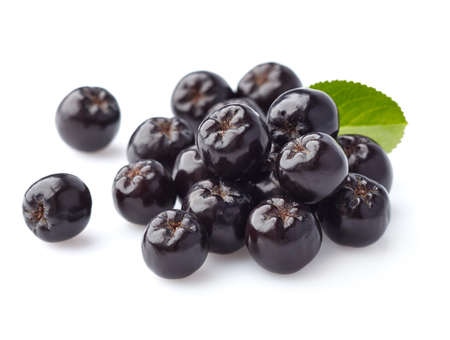 Aronia berry Stok Fotoğraf - 46020262