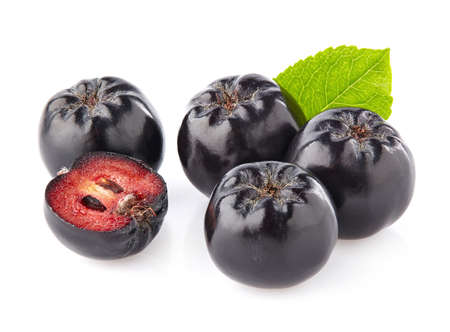 plant antioxidants: Chokeberry in closeup