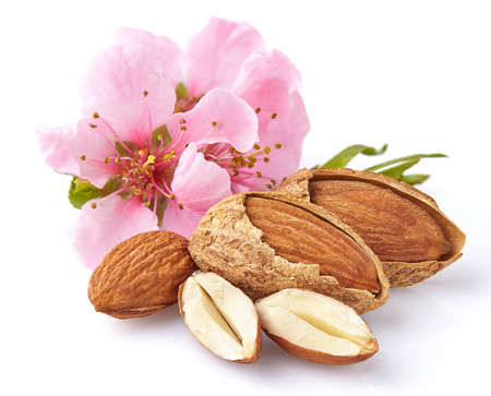 almond: Almonds with pink flowers