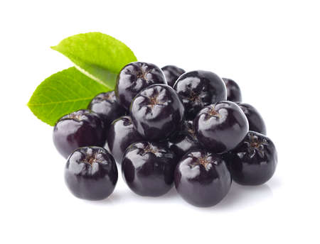 plant antioxidants: Chokeberry with leaf