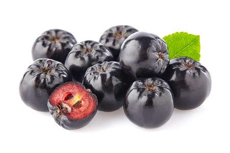 Appelbes met blad Stockfoto