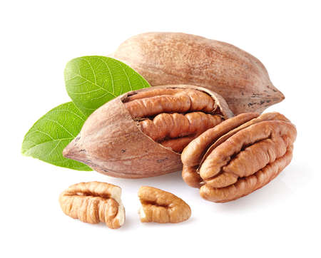 hickory nuts: Pecan nuts in closeup