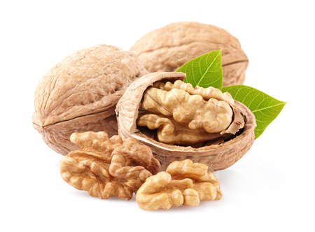 Walnuts with leaves