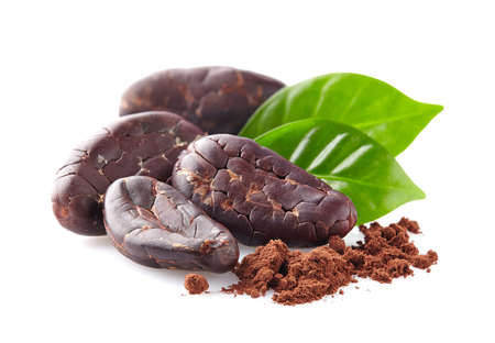 Cacao beans with leaves Stock Photo - 49254575