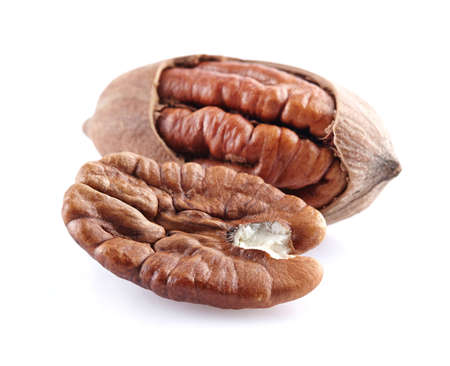hickory nuts: Pecan nut