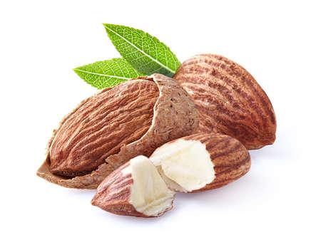 kernel: Almonds kernel with leaf