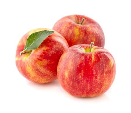 fresh leaf: Fresh apples with leaf