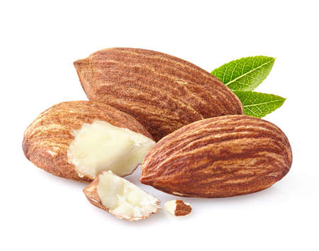 hickory nuts: Almonds kernel in closeup Stock Photo