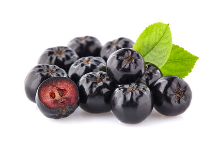 Chokeberry with leaf.Black aronia.