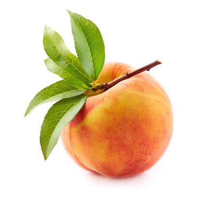 桃の葉 写真素材 - 87263834
