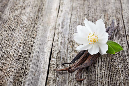 Jasmine with vanilla on a wooden background Stock Photo