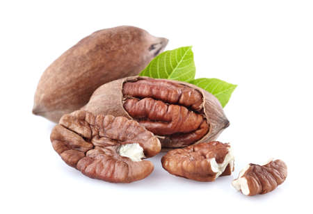Pecan nuts with leaf