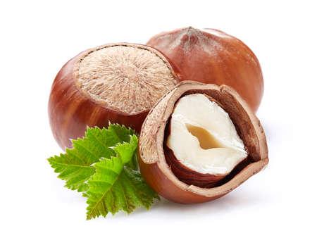 白い葉のヘーゼルナッツ