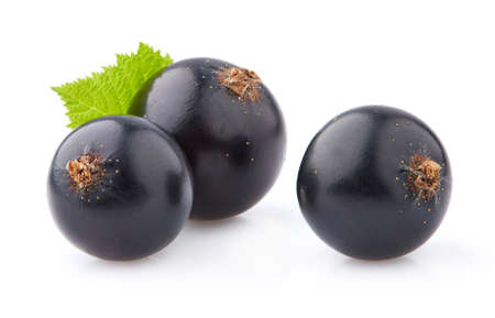 Blackcurrant in closeup with leaves