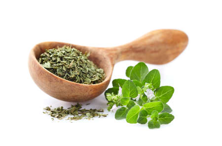 Oregano fresh and dry