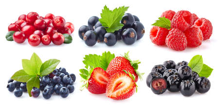 Collection of fresh berries on white background
