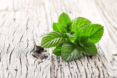 Mint leaves on wooden background