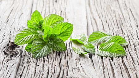 Mint plant on wooden background Stock fotó - 128001457