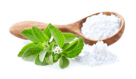 Stevia plant with stevia powder on white background