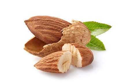 Almonds kernel with leaf in closeup Stock Photo