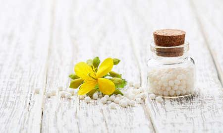 Homeopathic helidonium globules with helidonium majus flower