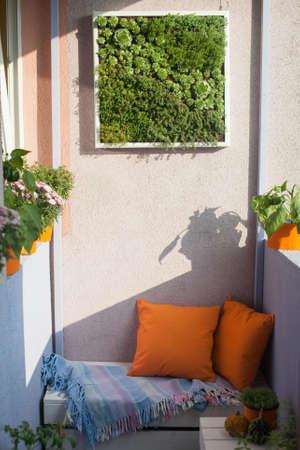 House plants on the balcony photo
