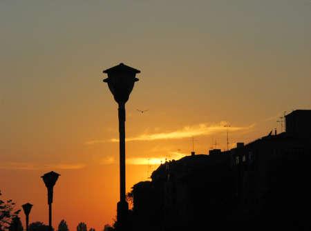 night urban scape photo