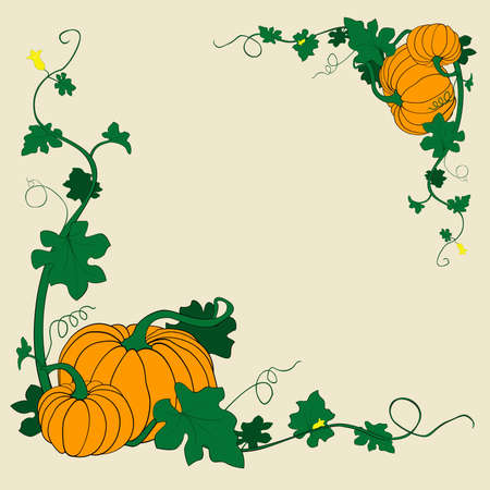 thanksgiving pumpkins frame vector illustration illustration