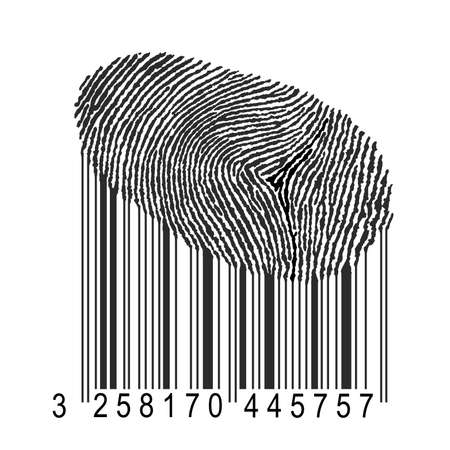 bifurcation: identity concept illustration, human fingerprint with product bar code Stock Photo