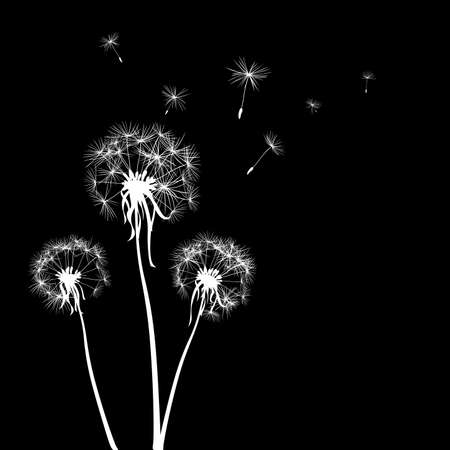 posterity: silhouettes of three dandelions in the wind