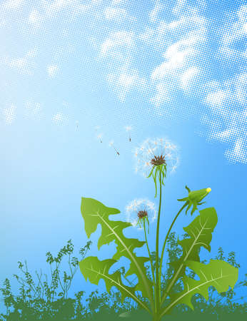 posterity: dandelions in wind on light blue background
