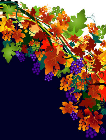 sycamore leaf: autumnal background with grapes