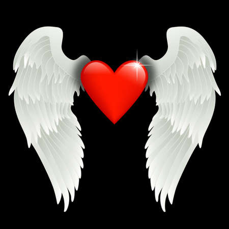 shiny red heart with angel wings  photo