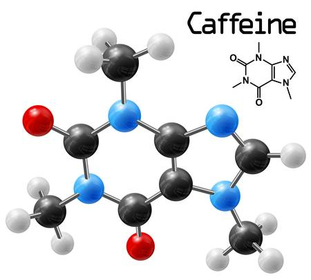 caffeine: structural model of caffeine molecule