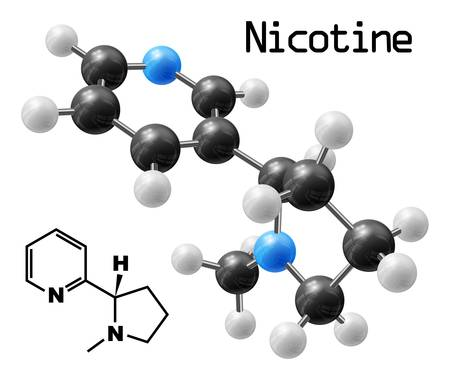 structural model of nicotine molecule Ilustracja