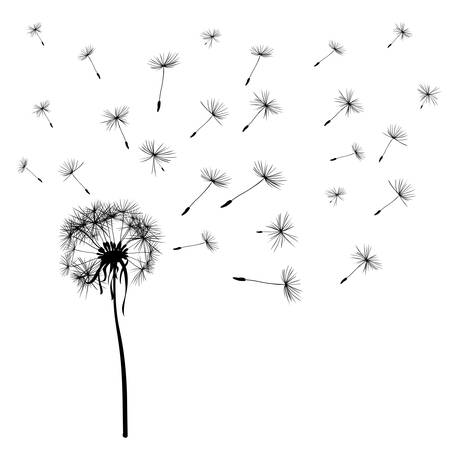 dandelion wind: dandelions flying in the wind Illustration
