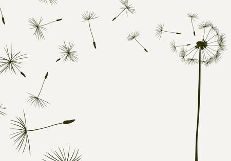 dandelion flower: dandelions flying in the wind Illustration