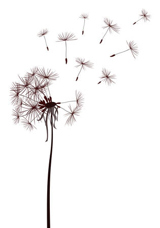 dandelions flying in the wind Ilustracja