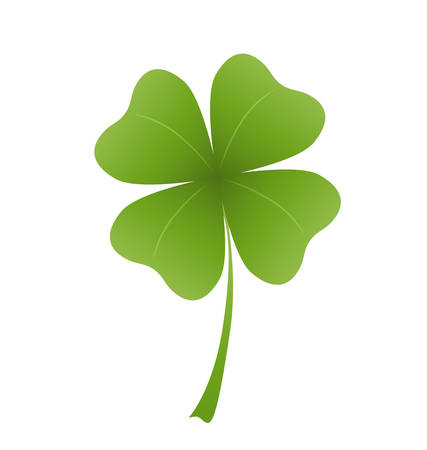 shamrock clovers: shamrock leaf on white background