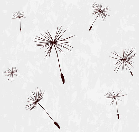 flimsy: silhouettes of dandelion seeds in the wind
