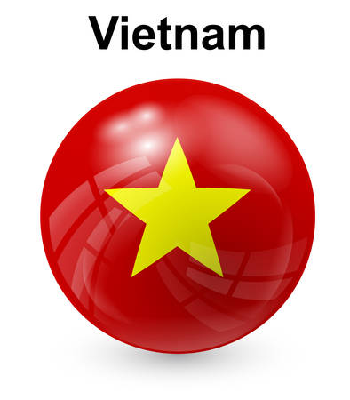 vietnam flag: vietnam official state flag