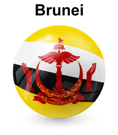 official: brunei official state flag