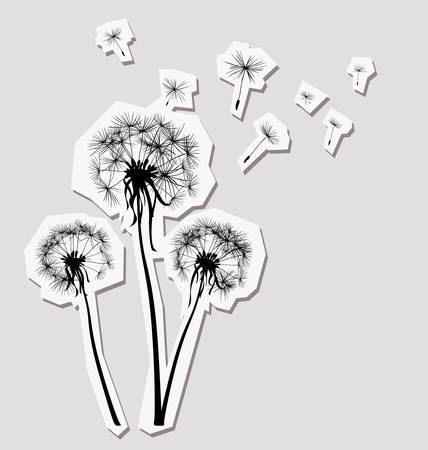 overblown: silhouettes of three dandelions in the wind
