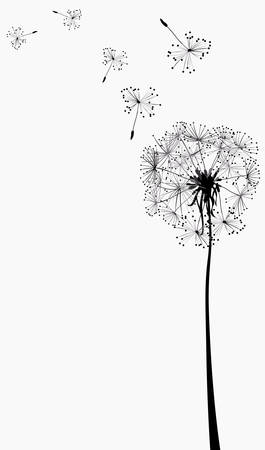 flimsy: dandelions silhouettes in the wind Illustration