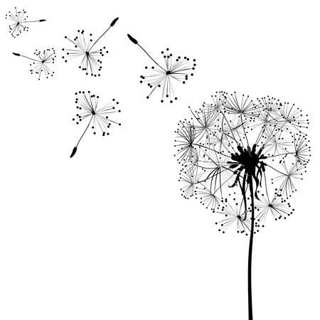 pistil: dandelions in wind