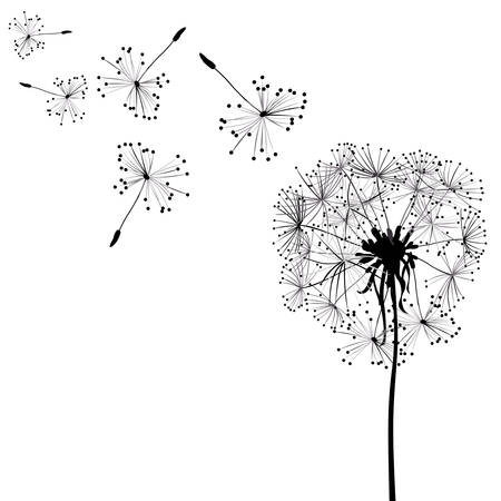 dandelion abstract: dandelions in wind