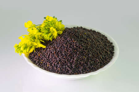 Brown Mustard seeds heap and mustard flower isolated on white background Stock Photo
