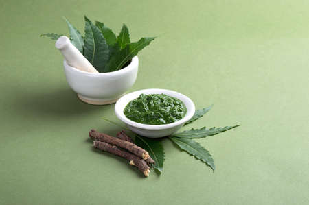 Medicinal Neem leaves in mortar and pestle with paste and twigs on green background Stock Photo