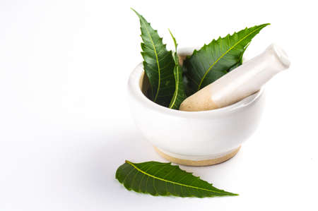 Mortar and pestle with medicinal neem leaves on white background Stock fotó